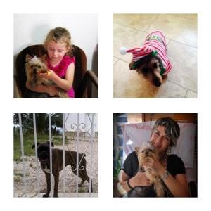 vida de perros_pura maria